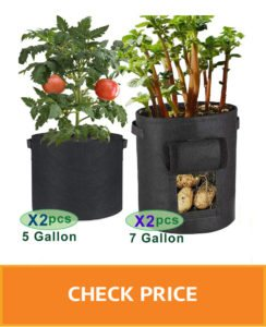 patio tomato planter