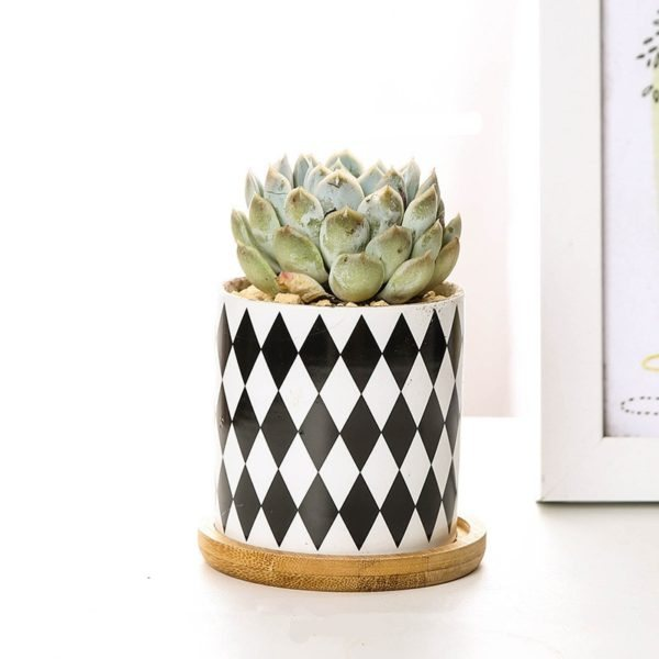 Ceramic-Black-White-Pot