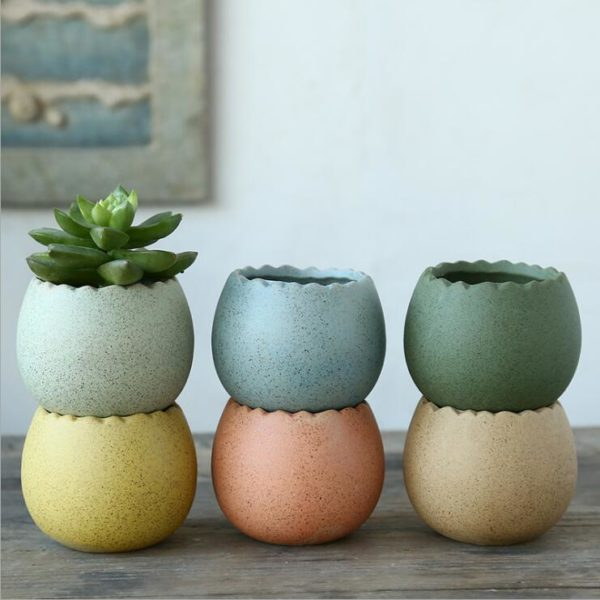 little pots for succulents