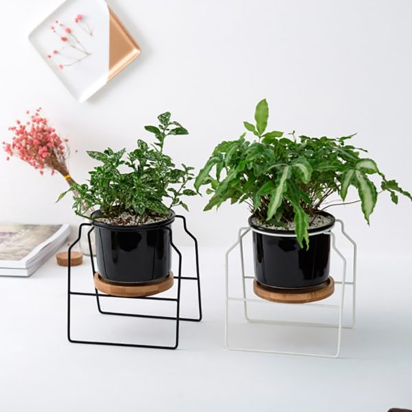 Modern Ceramic Orchid Pot with stand