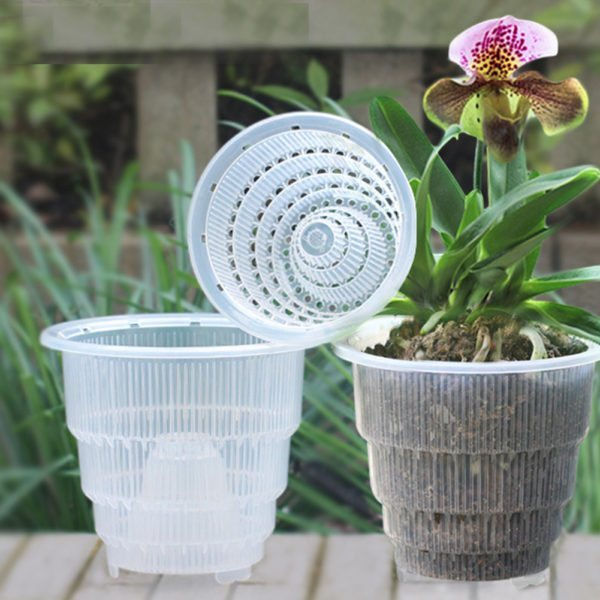 self watering pots for orchids