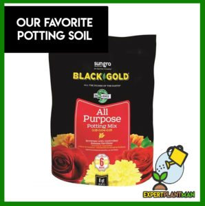 best potting soil brands