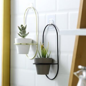 Wall Hanging Indoor Pot
