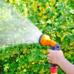 7 Best Hose Nozzle For Gardening [Buyer's Guide]