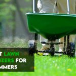 Best Lawn Fertilizers For Summer [Top 7 Reviewed]