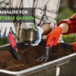 Best Manure For The Vegetable Garden [Top 8 Reviewed]