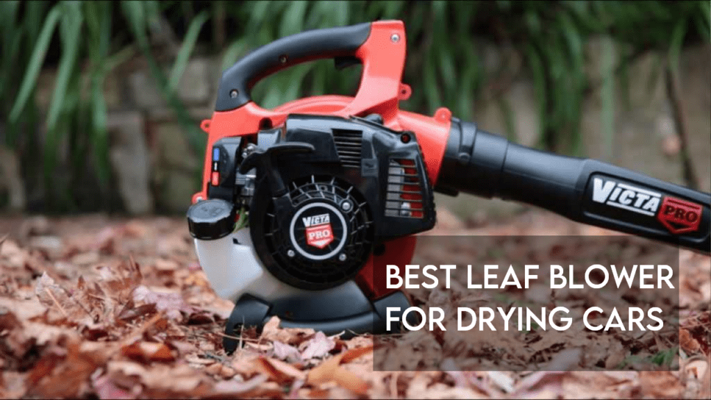 best leaf blower for drying cars