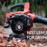 Best Leaf Blower For Drying Car [Top 8 Reviewed]