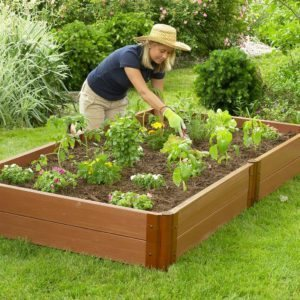 Best Wood For Raised Garden Beds Organic Edition Expert Plant Man